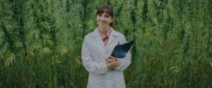 dr weed