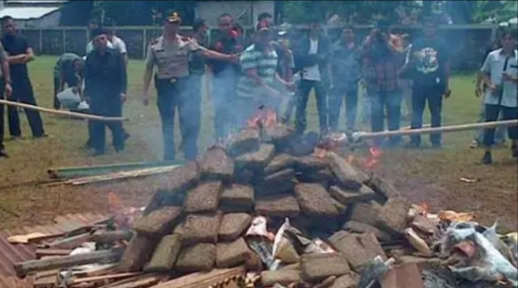 Throwback: Police Accidentally Get Everyone High After Burning 3 Tons of Weed