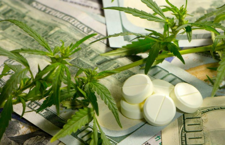 The Problem With Withholding Cannabis From Elderly Opioid Users