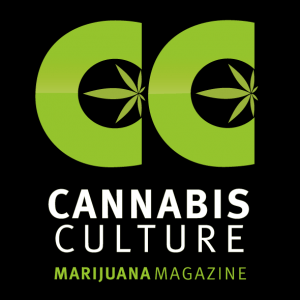 25th Annual 4/20 Protest Set to Bloom In the Legal Cannabis Desert