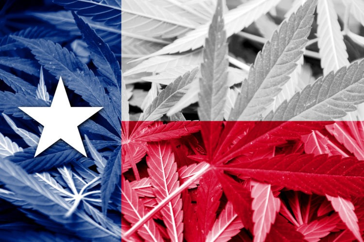 Texas: Lawmakers Approve Cannabis Decriminalization In Committee Vote