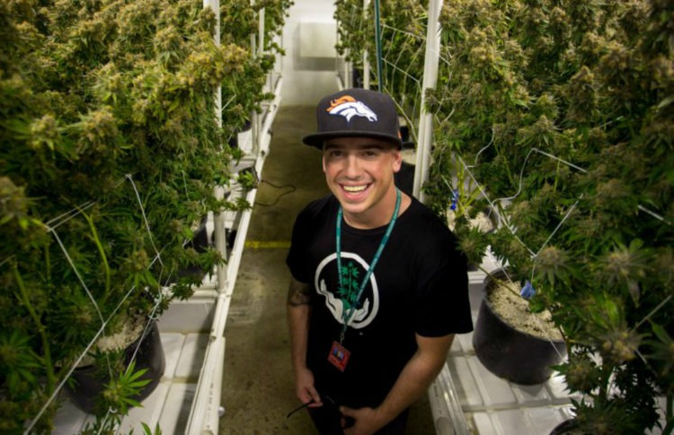 From Treating His Epilepsy With Weed as a Teen, This 32-year-old Is Now a Multimillionaire Cannabis Entrepreneur