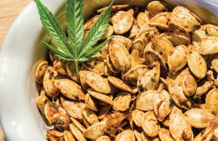 Jerk Roasted Pumpkin Seeds: Shake Up Movie Night at Home With This Cbd-Infused Snack