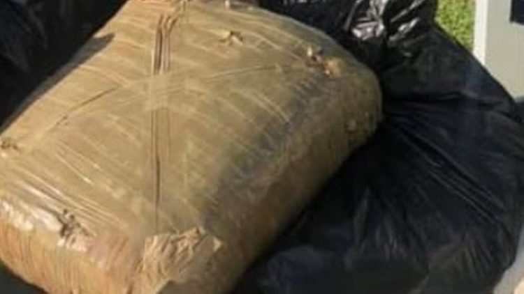 Kids Were Picking Up Trash For Earth Day And Found A 22-Pound Bale Of Weed
