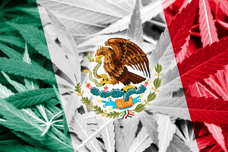Mexican President Wants To Decriminalize All Drugs