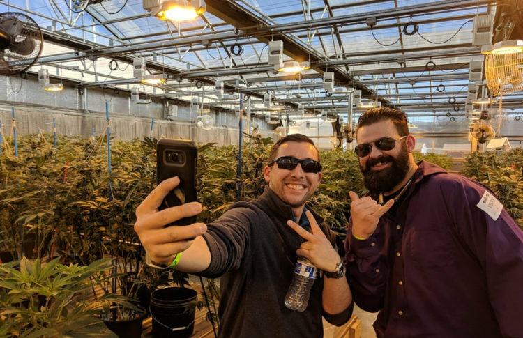 Cannabis Tourism is on the Rise