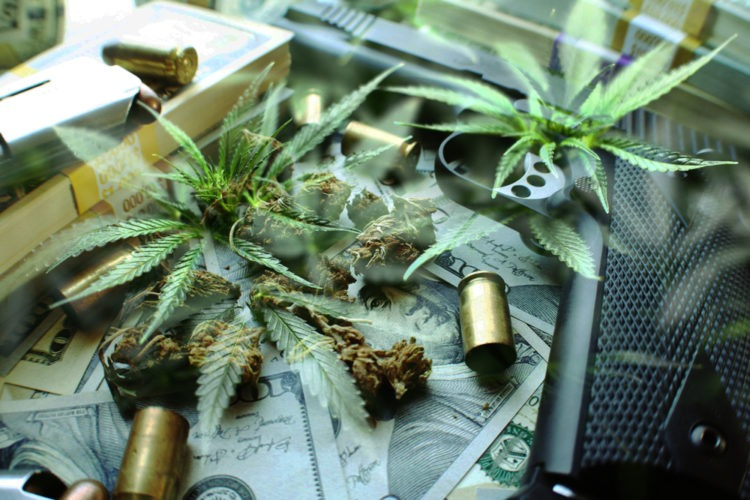 America: Concealed Firearms And Medical Cannabis Can't Coexist