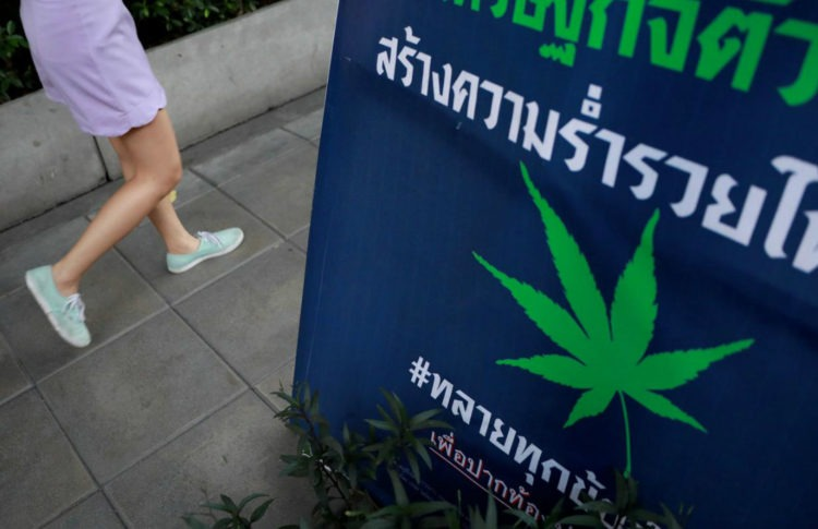 Thailand Set to Deliver First Batch of Medical Marijuana