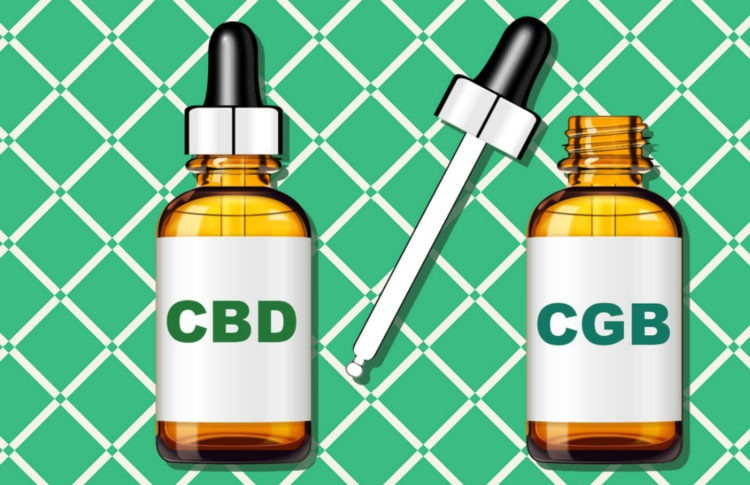 Is CBG the Next CBD? Here's What You Should Know