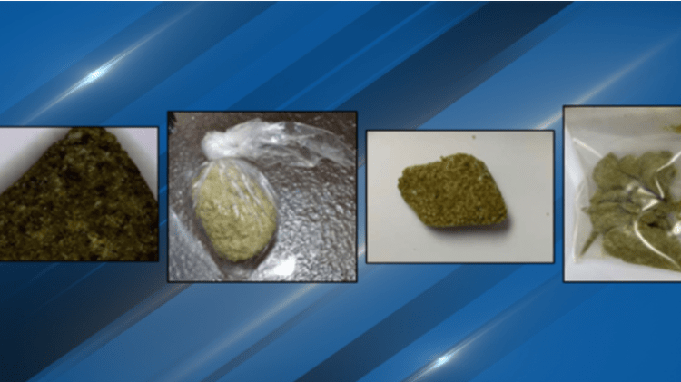 "Law Enforcement Warns Of Fentanyl That ""Looks Like Weed"""