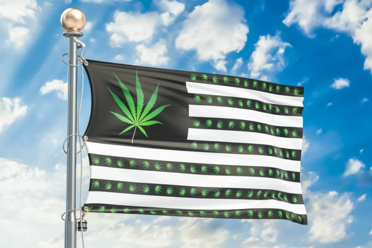 Head: US Congress could advance cannabis decriminalization bill tomorrow
