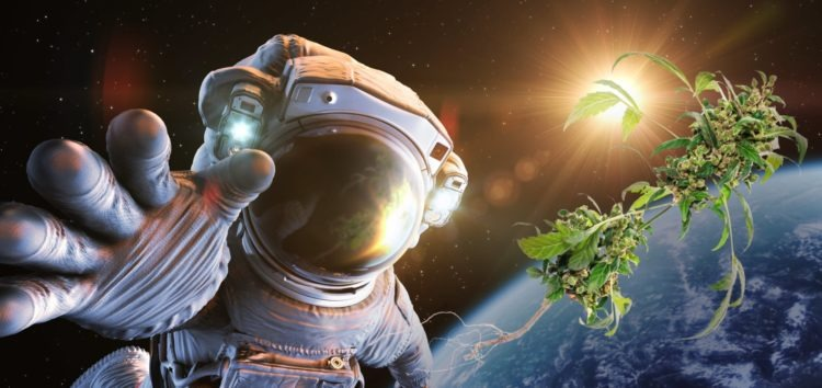 Elon Musk Is Sending Weed To Astronauts On The ISS in 2020