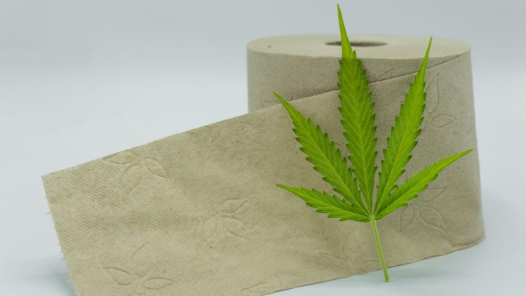 Hemp Toilet Paper – Why Is That Even a Thing and Should You Use It?