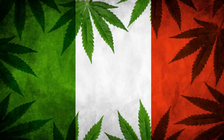 Italy Allows It's Citizens To Grow Cannabis At Home