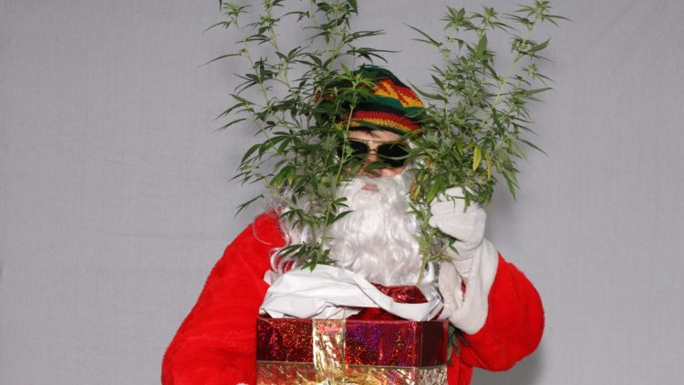 This Dude Got Caught With 80 Pounds of Weed Hidden in Christmas Presents