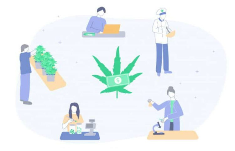 The Highest-Paying Jobs in the Cannabis Industry