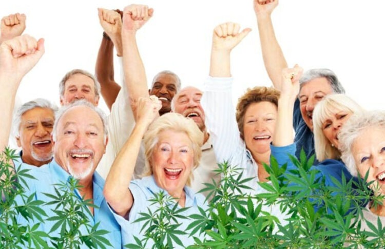 The Ultimate Guide to CBD and Seniors With Arthritis