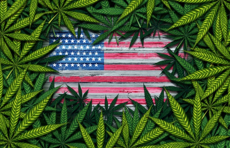 Why More States Could Legalize Cannabis in 2021