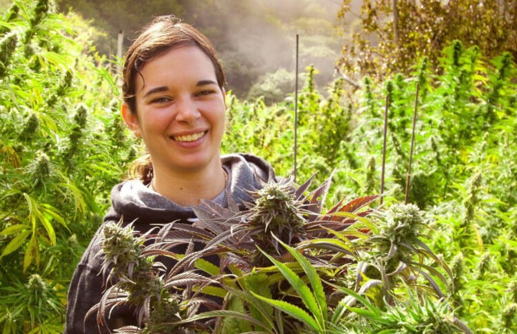 An Interview With Edibles Expert Elise McDonough, Confections At CannaCraft