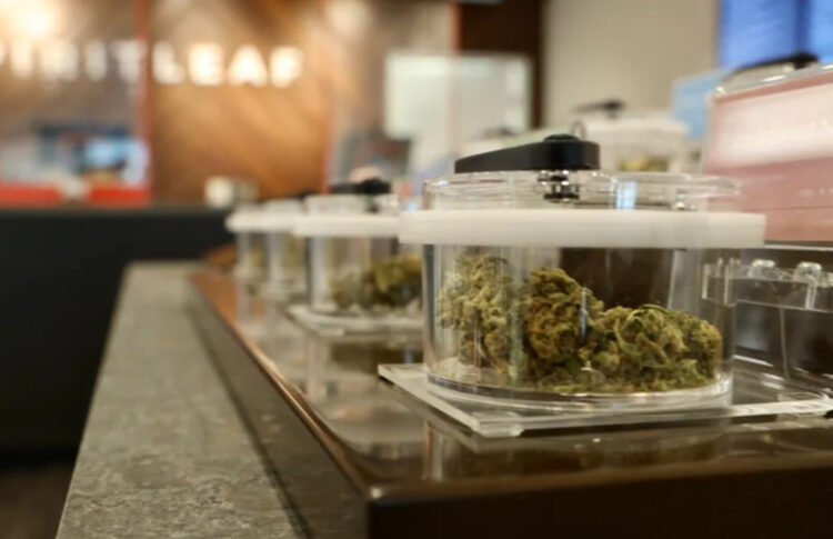 Private Pot Shops See Sales Decline After Delivery Cancelled by Province