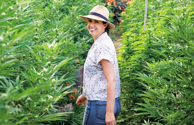 How To Cultivate Your Own Cannabis With This Gardener's Pro Tips