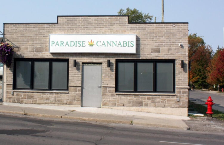 Seven Welland Cannabis Stores Awaiting Approval