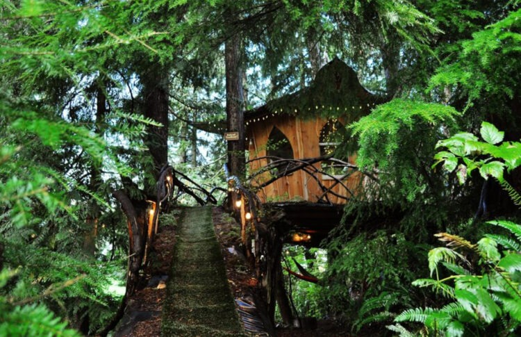 This Treehouse Is A Socially-Distant, Cannabis-Fueled Dream Vacation