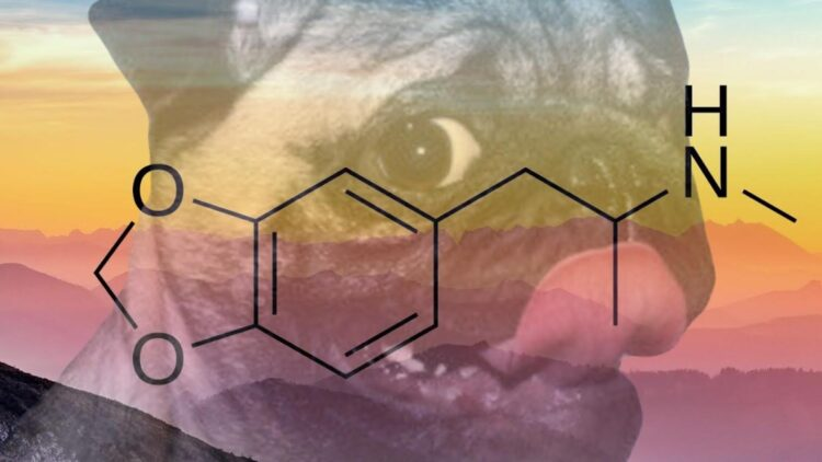 """""""Buried by Puppies Licking Your Face"""" (Canadian Firms Champion MDMA for PTSD)"""