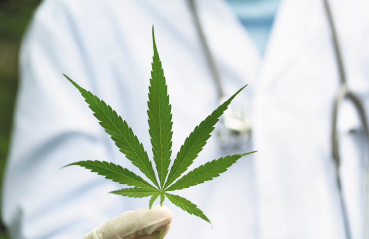 Cannabis And Chronic Pain: Does The Case For Medicinal Use Stack Up?