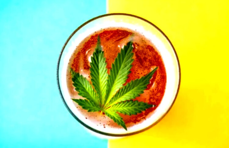 A Guide To Cannabis Beer