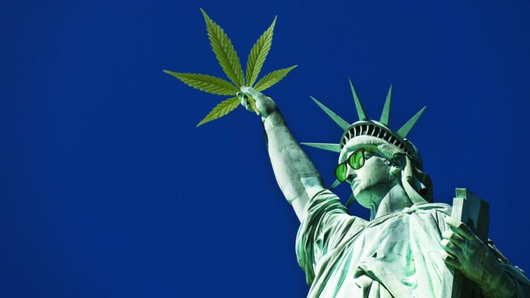 New York State Legalized Cannabis, Now What?