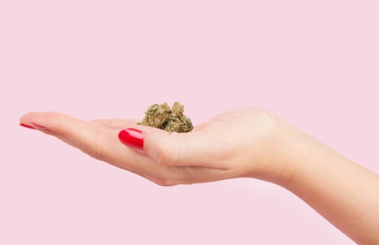 Women In Cannabis: 8 Founders On Breaking The Grass Ceiling And How To Keep It Broken