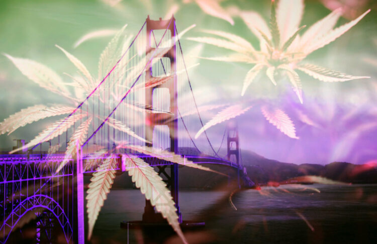 In San Francisco, Pride and Pot Go Hand-in-Hand